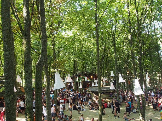 In the woods: scenes from Boomtown Festival, August 2016