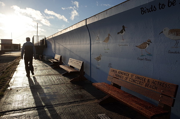 Canvey Island photos - beautiful artwork, sea views, racism and wifebeating, Essex, England