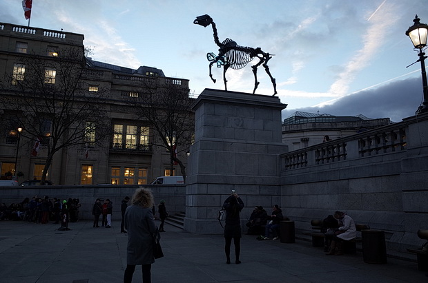 Gift Horse by German artist Hans Haackeon on Trafalgar Square's Fourth Plinth, London, March 2015