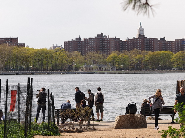 A walk around Grand Ferry Park, Williamsburg, Brooklyn, New York