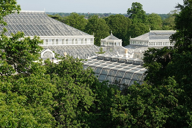 Fifty photos of the wonderful Kew Gardens including the Palm House, treetop walkway and amazing plants
