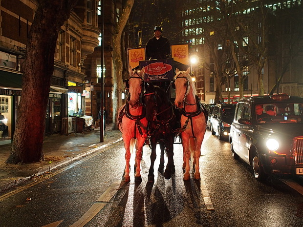 London street scenes - tourist tack, horse-drawn bus, photo exhibitions and the first Christmas tree, November 2015