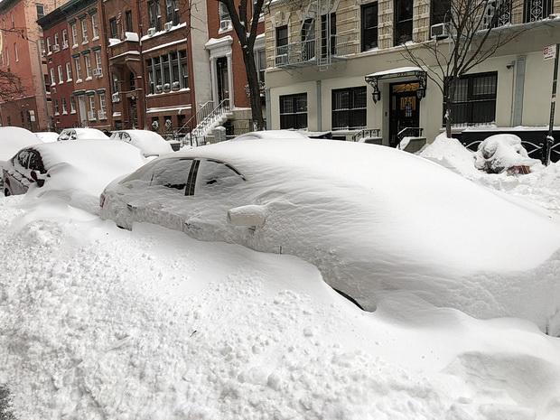New York in the snow: photos of Manhattan streets , Jan 2018