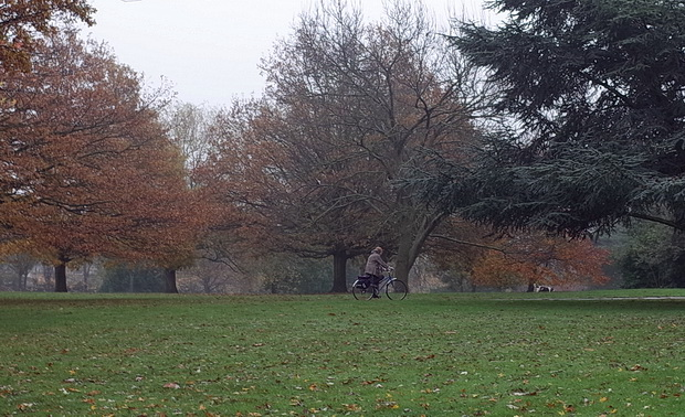 A depressing trudge in the rain around Northolt Park, north London, Saturday 15th November 2014