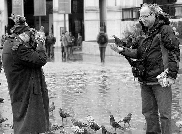 Pic of the day: feeding the pigeons, Trafalgar Square