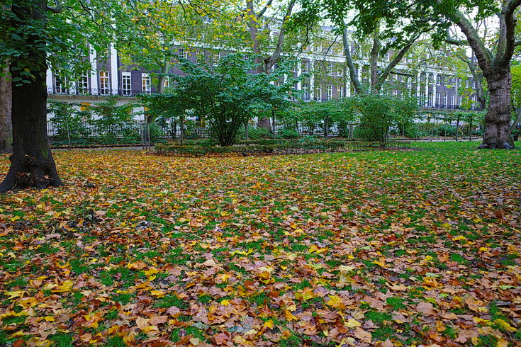 In photos: Tavistock Square - a public park in the heart of Bloomsbury, London