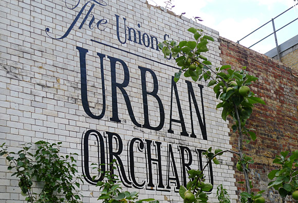 Urban Orchard, 100 Union Street, London SE1 part of London Festival of Architecture