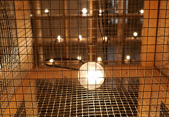 Whitechapel Gallery - buzzing light bulbs and coffee