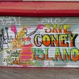I've always been drawn to Coney Island, a faded seaside resort  in southern Brooklyn facing the breezy Atlantic Ocean. Once a thriving retreat for New Yorkers, the area has been slowly decaying...