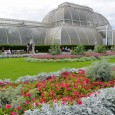Home to the world's largest collection of living plants, the Royal Botanic Gardens, Kew – otherwise referred to as Kew Gardens – covers 121 hectares in west London. Scroll on […]