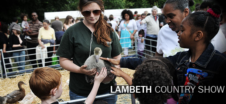 lambeth-country-show-brockwell-park