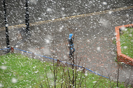 snow-brixton