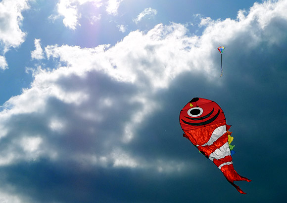streatham-kite-day-24