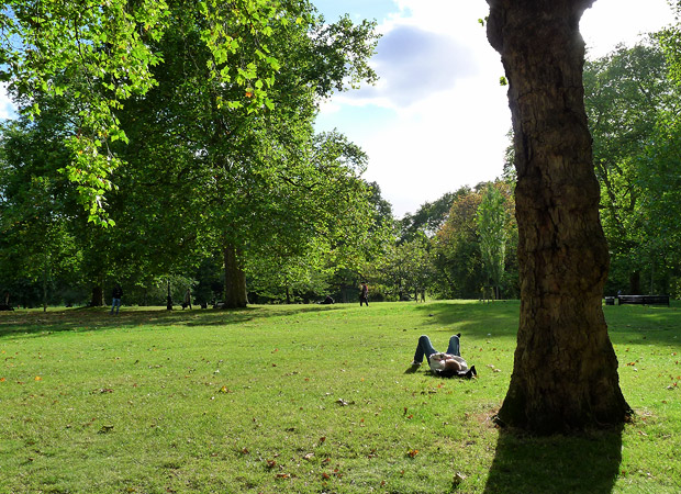 Last rays of summer, Green Park, London