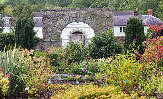 A walk around the National Botanic Garden of Wales, Towy Valley, Carmarthenshire