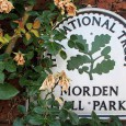 On a scorching Sunday afternoon, we headed off to Morden Hall Park, a National Trust park located on the banks of the River Wandle in Morden, south London.
