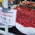 Photos of Union Square Farmers' Market and Holiday Market, New York