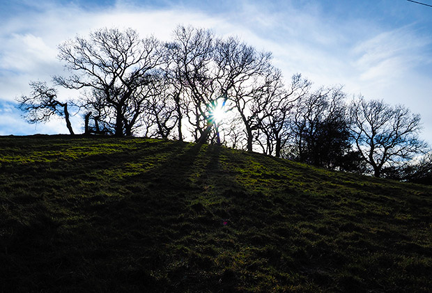 A Christmas Day stroll up Craig Llanishen, north Cardiff