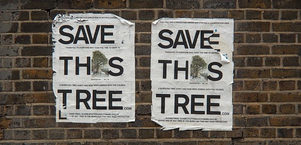 "Local campaigners are battling hard to save a large London Plane tree in Redcross Way, SE1 1TD, which the local council is trying to axe because it has become an ""insurance […]"