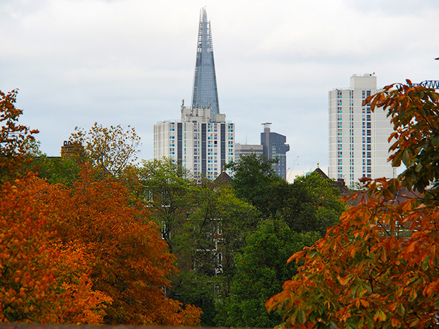 The reds and browns of London in Autumn