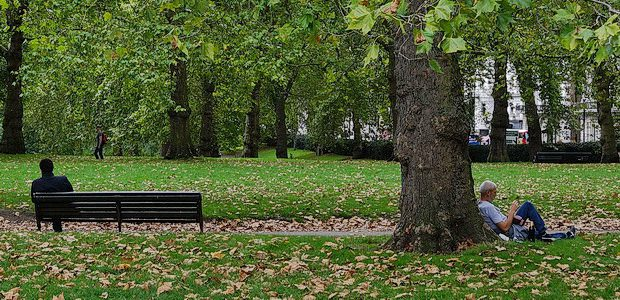 London is a fantastic city for walks and free art, and this short walk from Green Park tube station to Hyde Park and back takes in two galleries, a lake, […]