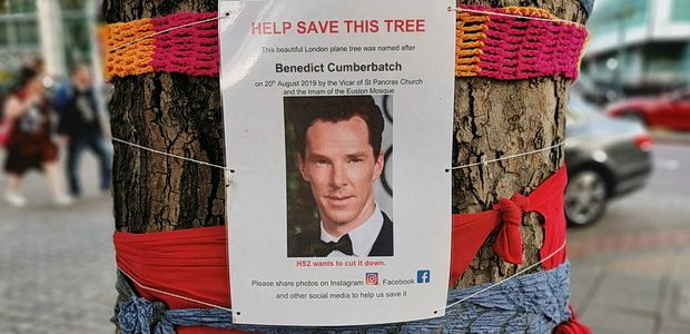 It's not every day you come across a tree named after the actor Benedict Cumberbatch, but that's what happened to me yesterday when I was walking along Euston Road in […]