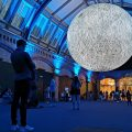 Museum of the Moon and other great things to see at London's Natural History Museum - in photos