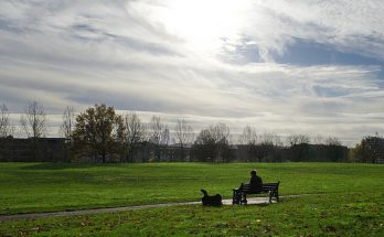 Finsbury Park in the autumn sunshine - 34 photos