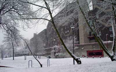 Brixton snow!