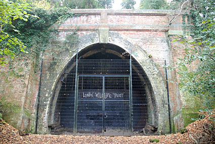 Crescent Wood Tunnel north portal.