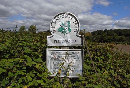 Petts Wood Walk
