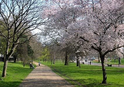 Photos of Hyde Park, Marble Arch, London