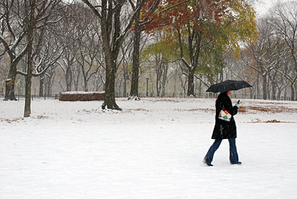 New York: Central Park in the snow