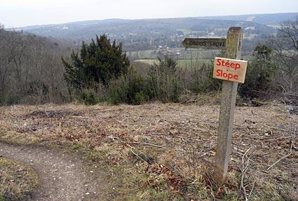 A Sunday walk around Boxhill