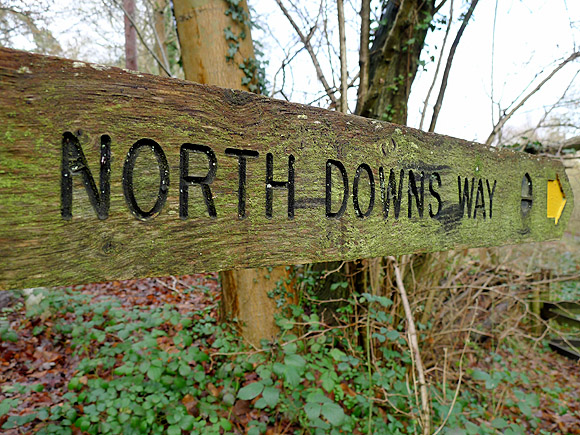 Walking the North Downs Way, Stage 1, Farnham to Guildford, England, Saturday 12th February, 2011